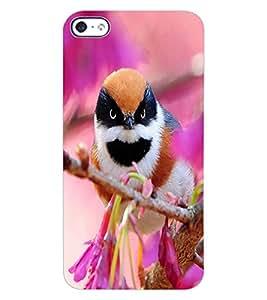 ColourCraft Beautiful Bird Design Back Case Cover for APPLE IPHONE 4