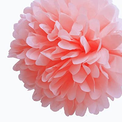 Dress My Cupcake 5-Inch Coral Peach Tissue Paper Pom Poms, Beach Party Decorations/Spring Party Supplies, Set of 8