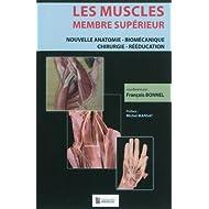 Les muscles, membre supérieur : Nouvelle anatomie - Biomécanique - Chirurgie - Rééducation
