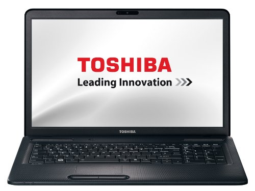 Toshiba Satellite C670D-11G 43,9 cm (17,3 Zoll) Notebook (AMD E300, 1,3GHz, 4GB RAM, 320GB HDD, AMD HD 6310M, DVD, Win 7 HP)