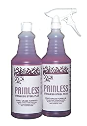 Apter Industries 13-PAIN-2/32 Painless Stainless Steel Cleaner Polish (Pack of 2)