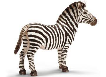 Schleich Zebra, Male - 1