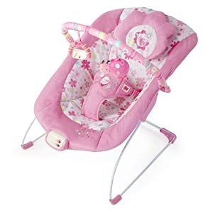 Bright Starts Bouncer, Blossomy Blooms (Discontinued by Manufacturer)