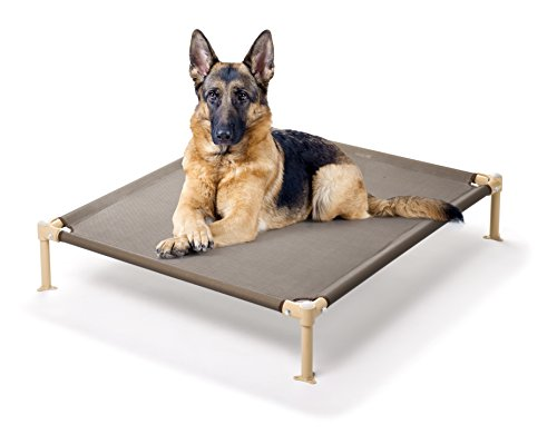Raised Dog Beds 7158 front