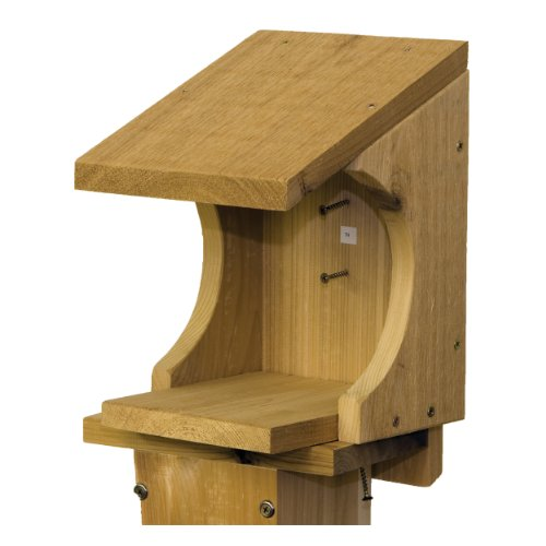 Nesting shelf for robins woodworking plans
