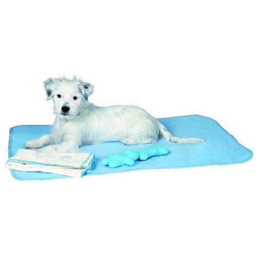 Welpen-Set, Decke, Spielzeug & Handtuch, hellblau