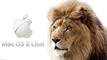 Mac OS X Lion 10.7 on Bootable USB Flash Drive for Installation or Upgrade