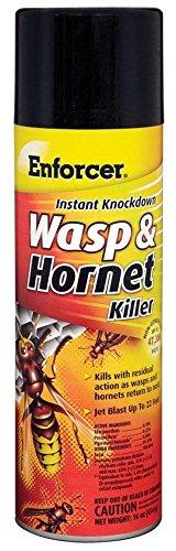 enforcer-wasp-hornet-killer