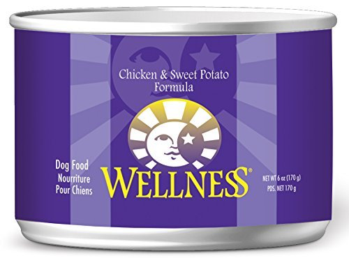 Wellness Complete Health Natural Wet Canned Dog Food Chicken