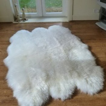 Genuine Authentic Sheepskin Six Pelt Ivory Sexto Home Decor