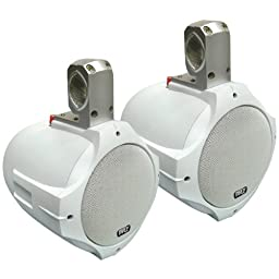PYLE PLMRW65 2-Way White Wakeboard Speakers (6.5inin, 200-Watt)