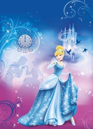Disney Princess Cinderella's Night Photo Wall Mural 254 x 183 cm by Komar