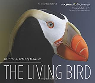 Book Cover: The Living Bird: 100 Years of Listening to Nature
