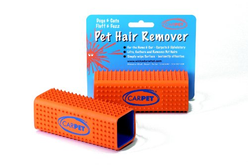 the-carpet-pet-hair-remover-pack-of-2
