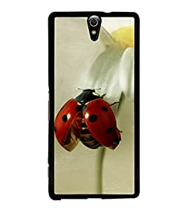 Red Beatle 2D Hard Polycarbonate Designer Back Case Cover for Sony Xperia C5 Ultra Dual :: Sony Xperia C5 E5533 E5563