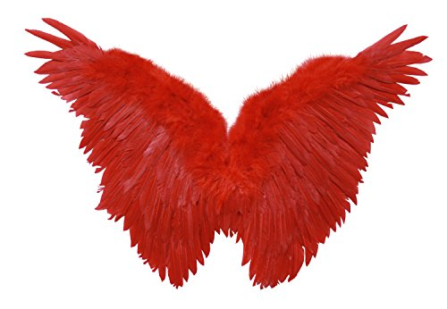 FashionWings (TM) Children's Red Butterfly Style Costume Feather Angel Wings