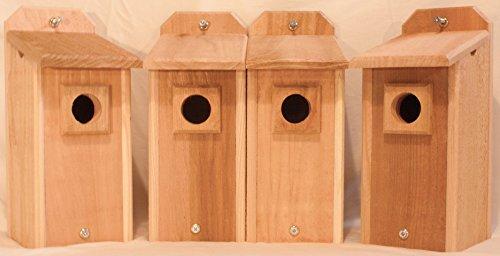 4 Cedar Bluebird Houses (Audubon Bluebird House compare prices)