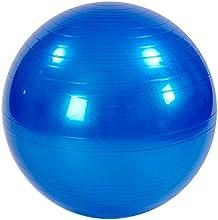 ALINCO(アルインコ) エクササイズボール ブルー 【特別限定モデル】 EXG025A