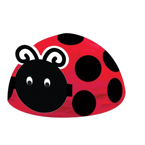 Creative Converting Ladybug Fancy Centerpiece - 1