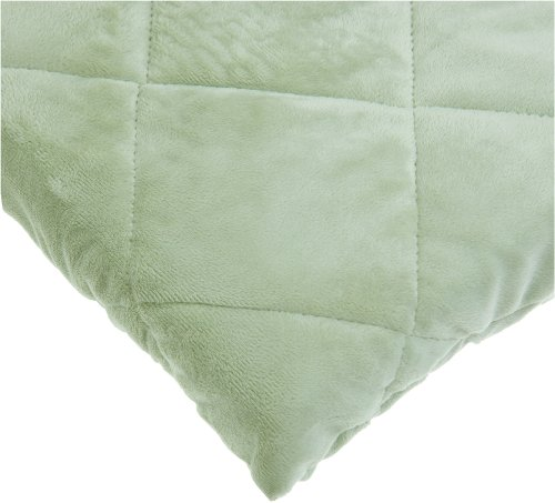 Read About Carters Velour Playard Fitted Sheet, Sage