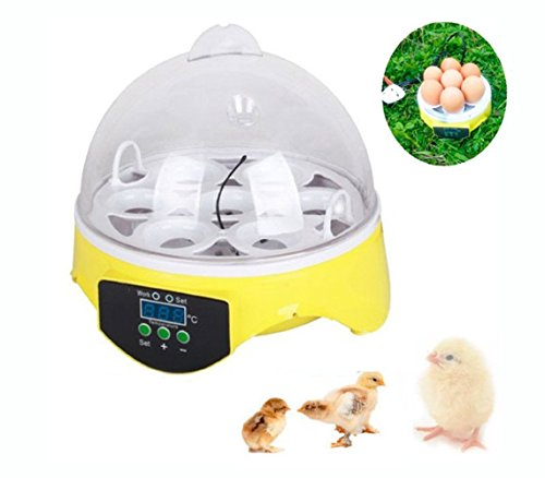Jack-Store Mini Automatic Digital 7 Eggs Poultry Incubator Hatcher Tool for Hatching Chicken Duck Bird (Small Chicken Egg Incubator compare prices)