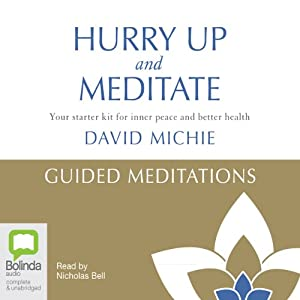 Hurry Up and Meditate: Guided Meditations | [David Michie]