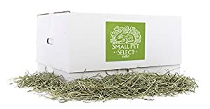 Small Pet Select Timothy Hay Pet Food, 20-Pound