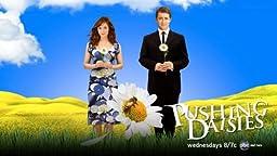 Pushing Daisies (TV)