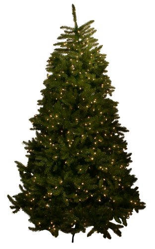 Good Tidings Cape May Fir Artificial Prelit Christmas Tree 9 Feet Tall with 900 Clear