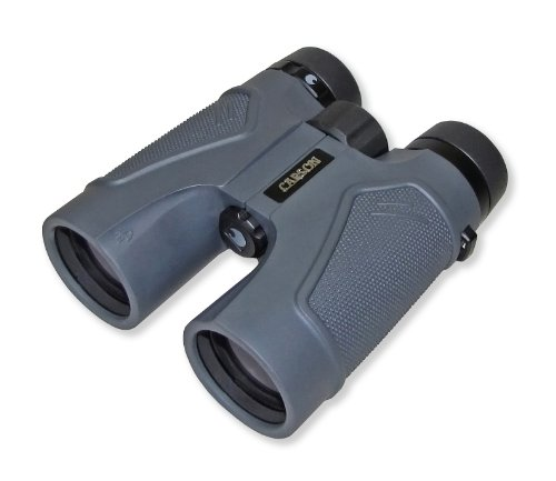 Carson® 3D Series 10X42Mm Binocular With High Definition Optics (Td-042)