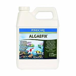 API Pondcare Algaefix Alage Control, 32-Ounce