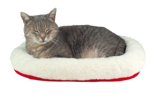 Cushy Bed for Cats, Pet Kittens