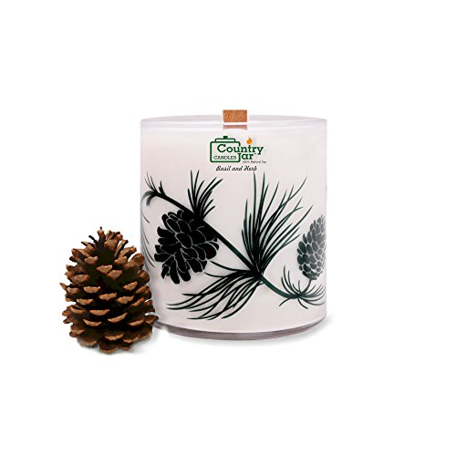 country-jar-holly-berry-natural-soy-candle-1-lb-100bh-limited-edition-woodwick-pine-jar-sale-buy-any