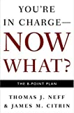img - for You're in Charge now what? the 8 point plan book / textbook / text book