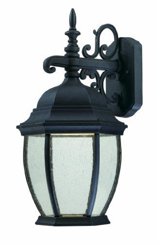 Thomas Lighting Tw0002030 Covington Led Outdoor Wall Lantern, Black