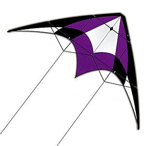 XL Sport Dual Control Nylon Kite: Purple by X-Kites
