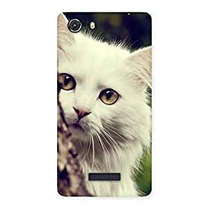 Special Cat Hide Back Case Cover for Micromax Unite 3