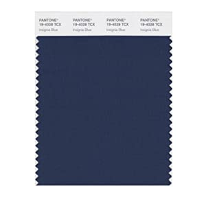 Pantone Navy Blue Swatch