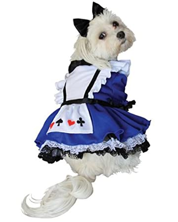 Alice Costume for Dogs