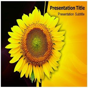 Sun Flower Powerpoint Template - Sun Flower PPT Powerpoint Templates