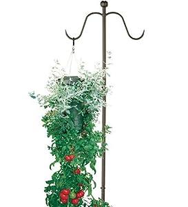 Amazon.com : Upside-Down Hanging Tomato Plus Planter