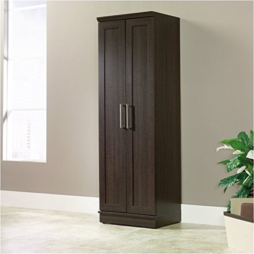 sauder-homeplus-basic-storage-cabinet-dakota-oak