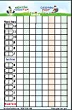 Domino 4-Color Scorepad for Mexican Train   Chickenfoot