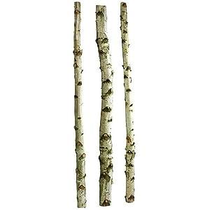Birkenstämme 3 Stück 2m x 610cm | Birkenstamm | Wohnraumdekoration | Bürodekoration | Deko Holz    Kundenbewertung und Beschreibung
