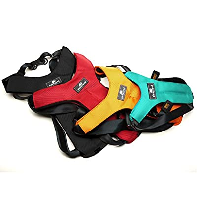 Sleepypod ClickIt Sport Crash-Tested Car Safety Dog Harness