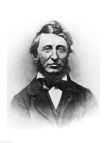 Henry Thoreau