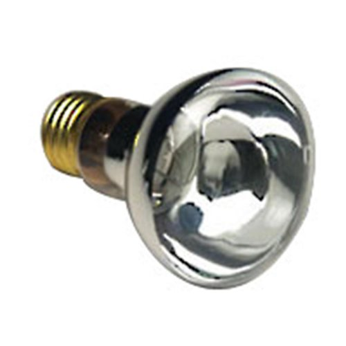 Halco 100W R20 Cl 12V Halco R20Cl100/12V 100W 12V Incandescent Clear Pool Lamp Lamp Bulb