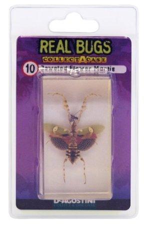 DeAgostini Real Bugs Jeweled Flower Mantis Bug - 1