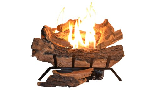 Sure Heat AEVF18FALP American Elm Fully Automatic Vent Free Gas Log Set, 18-Inch, Liquid Propane (Outdoor Liquid Propane Fireplace compare prices)