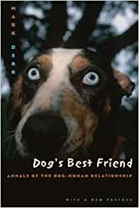 Dog S Best Friend Annals Of The Dog Human Relationship